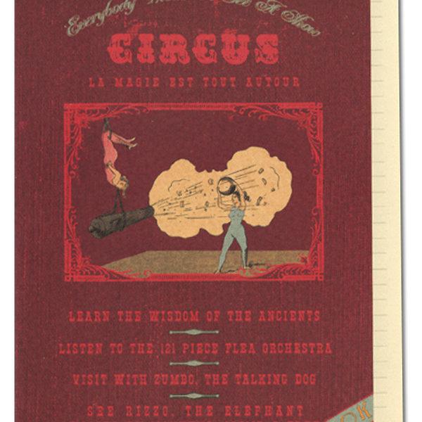 n15-circus-journal