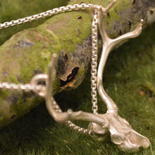 j12-deer-skull1
